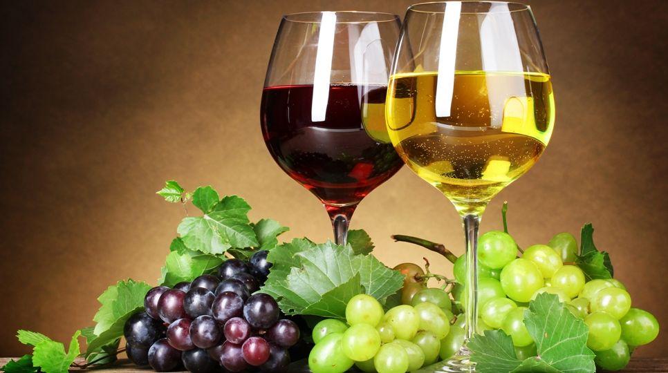 el-arte-de-la-degustacion-de-los-vinos-el-portal-del-chacinado