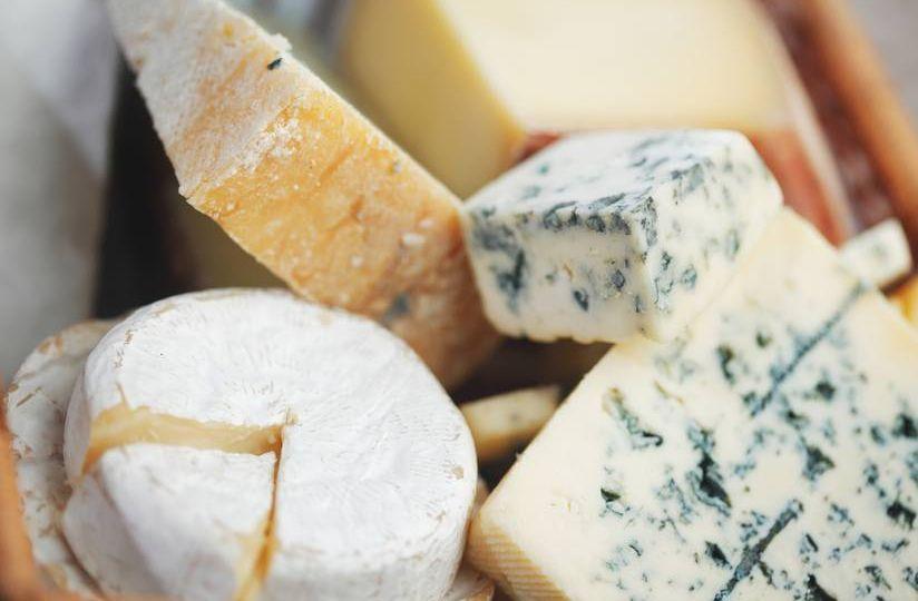 Curso-de-elaboracion-de-quesos-artesanales-de-leche-de-cabra-oveja-y-bufala-El-Portal-del-Chacinado