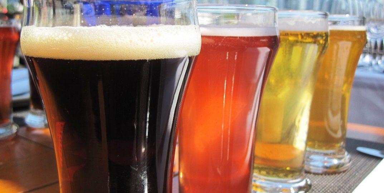Elaboración-Cervezas-Orgánicas-cada-vez-más-sanas-El-Portal-del-Chacinado