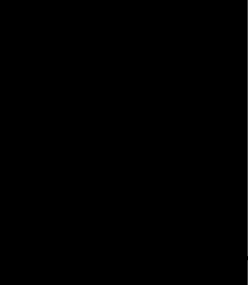 jamon-jabugo-el-portal-del-chacinado