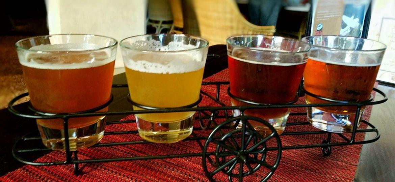 La-cerveza-según-el-tipo-de-levadura-el-Portal-del-Chacinado