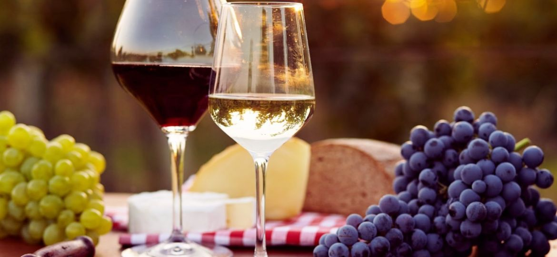 la-copa-para-disfrutar-del-vino-el-portal-del-chacinado