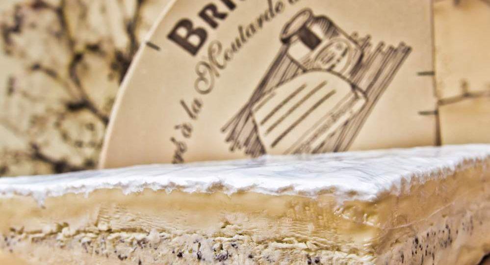 Queso-Brie-de-Meaux-AOC-à-la-Moutarde-de-Meaux-El-Portal-del-Chacinado