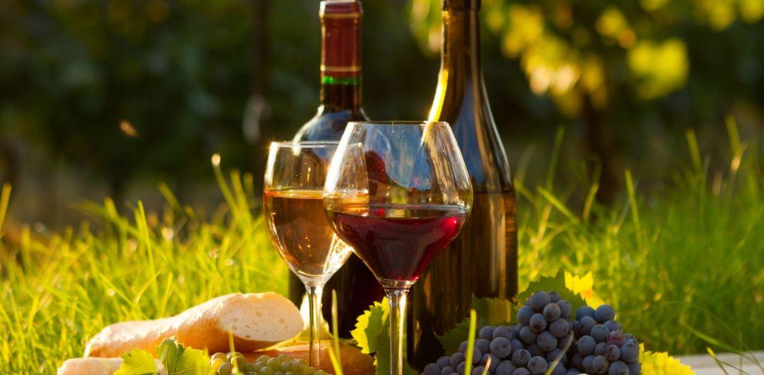 Vinos-orgánicos-y-la-agricultura-biodinámica-Los-Vinos-El-Portal-del-Chacinado